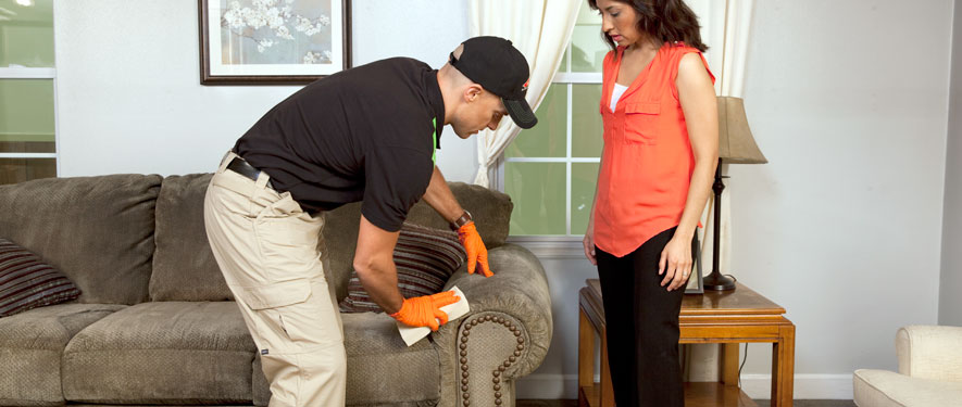 Holmdel, NJ carpet upholstery cleaning