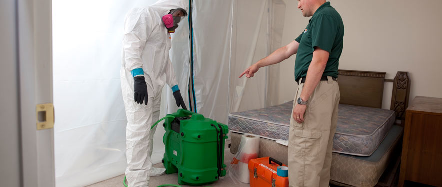 Holmdel, NJ mold removal process